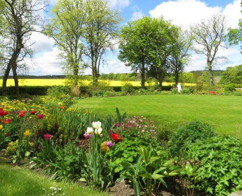 Embo-house-garden